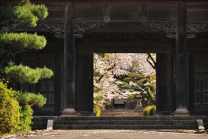 毛利家菩提寺 東光寺へようこそ