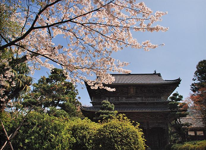 豊かな「自然」、すばらしい「歴史」と「文化」の街、萩市